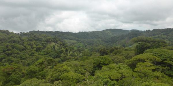 Costa Rica – Monteverde