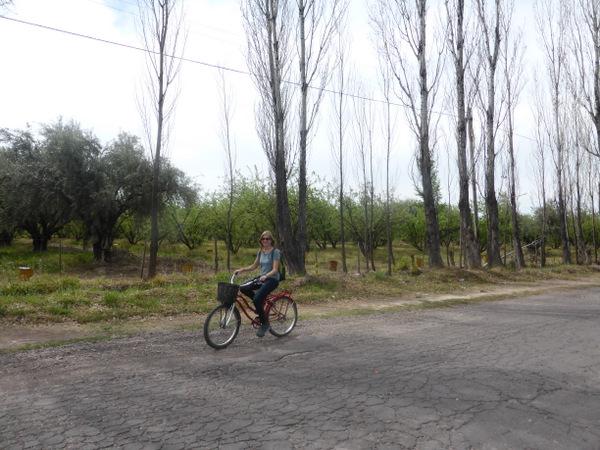 Argentina Mendoza Bikes