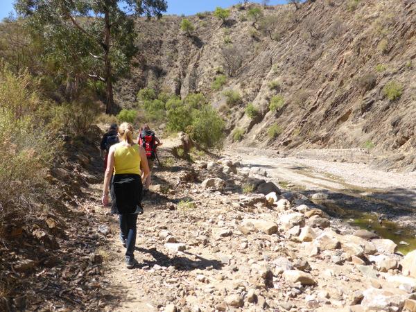 Bolivia Sucre Walk