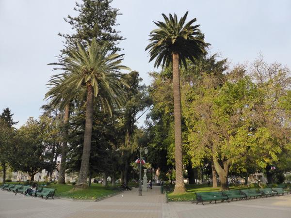 Chile Talca