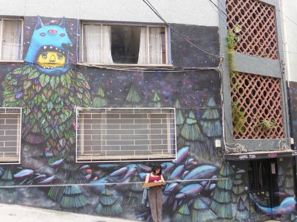 Chile Valparaiso Artist